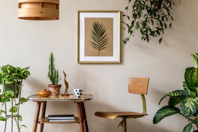5 Types of Plants That Can Be Used In Your Bedroom
